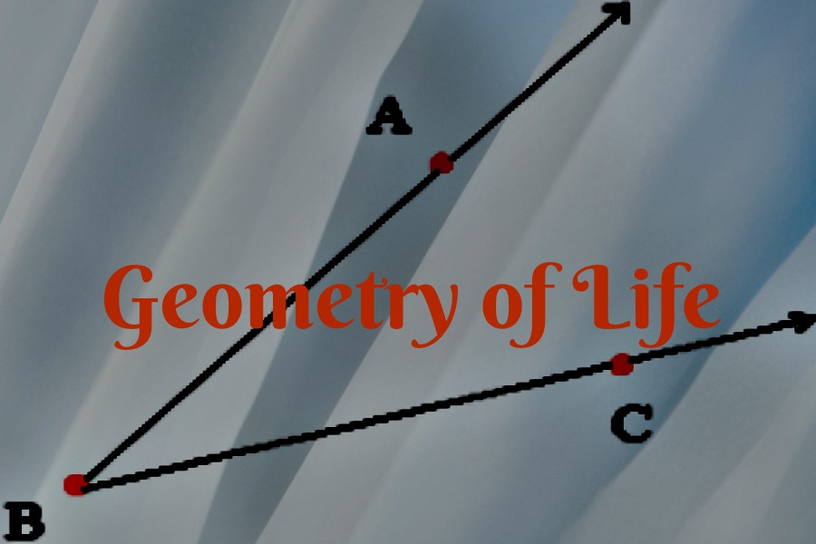 The Geometry of Life